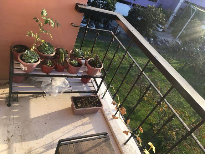 2 bedroom condo unit for Rent in Tuscany Private Estate, Fort Bonifacio, Taguig City (12)