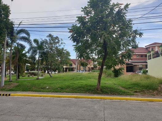 Residential Lot for Sale in Citta Italia Crown Asia, Molino, Bacoor Cavite (4)